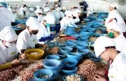 Xuất khẩu của Việt Nam sang Algeria giảm 2%