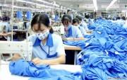 FTA Việt Nam và Liên minh kinh tế Á - Âu: Ngành nào lợi thế nhất?