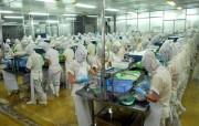 Hàng Việt nguy cơ 'lép vế' khi hội nhập do quá nhiều khâu trung gian