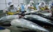 Cá ngừ Việt Nam là mặt hàng xuất khẩu tiềm năng sang Israel