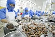 Thủy sản Việt trước thềm TPP: Mừng ít, lo nhiều