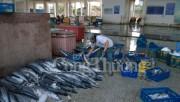 Bộ Công Thương cam kết hỗ trợ tiêu thụ thủy sản an toàn tồn kho tại Huế