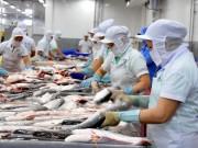 Ngành thủy sản tăng trách nhiệm xã hội trước yêu cầu hội nhập