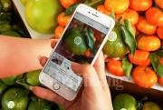 TP. Hồ Chí Minh xây dựng quy chế kiếm soát chất lượng, an toàn thực phẩm