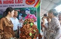 vai thieu hai duong chinh phuc khach hang bang chat luong