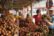 Khai mạc Tuần lễ Vải thiều Lục Ngạn - Bắc Giang tại Hà Nội năm 2017