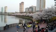 Quảng bá du lịch Seoul tại Hà Nội