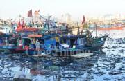 Nhức nhối ô nhiễm môi trường cảng cá Thọ Quang