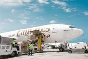 Gia tăng xuất khẩu hàng tươi sống từ Việt Nam sang UAE qua đường hàng không