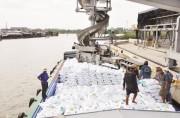 Việt Nam khởi động điều tra tự vệ về khoáng sản hoặc phân bón hóa học