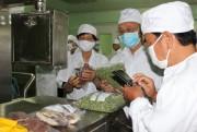 Chế tạo thành công hệ thống sấy nông sản, thực phẩm, dược liệu hiệu quả cao