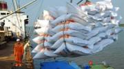 Cơ hội xuất khẩu 500.000 tấn gạo sang Indonesia