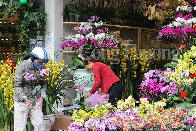 tap nap cho hoa ngay can tet