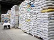 Xuất khẩu gạo tháng 2/2016: Tăng mạnh về giá trị và khối lượng