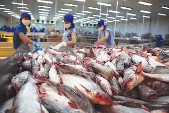 Xuất khẩu thủy sản năm 2021: Cần tạo ra sự khác biệt cho sản phẩm xuất khẩu