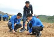 Phát động Tết trồng cây hưởng ứng Tháng thanh niên 2015