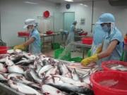 Vượt EU, ASEAN trở thành thị trường lớn thứ 3 của cá tra Việt