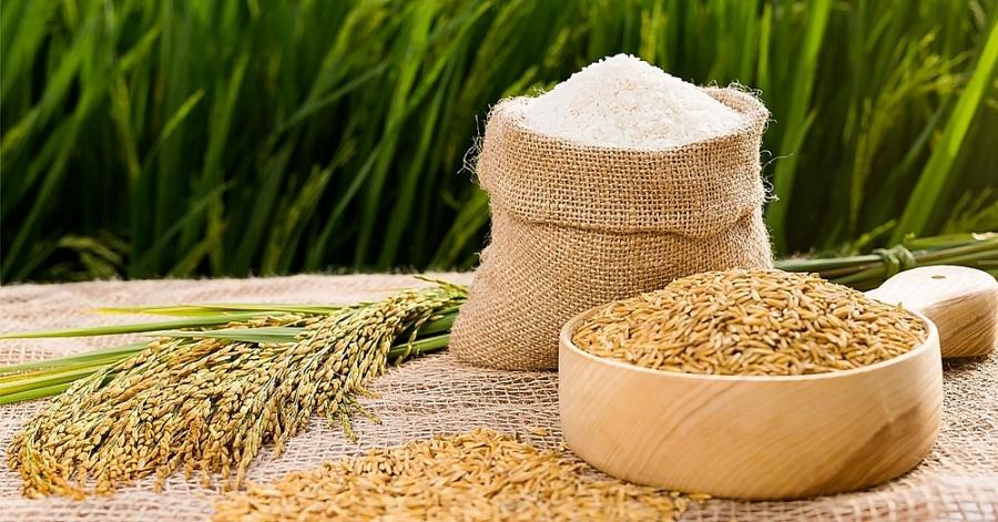 Doanh nghiệp có thể tự chứng nhận xuất xứ để được hưởng ưu đãi từ UKVFTA