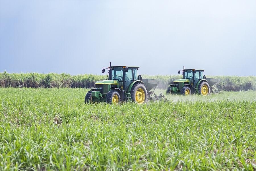 Cần giải pháp phát triển vùng nguyên liệu mía đường bền vững