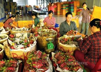 Doanh nghiệp muốn hưởng lợi từ ACFTA cần lưu ý gì về xuất xứ hàng hóa?