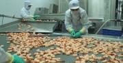 Hai lô hàng vi phạm an toàn thực phẩm khi xuất khẩu sang Australia
