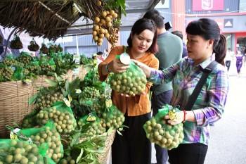 Hưng Yên: Đẩy mạnh tiêu thụ sản phẩm thế mạnh