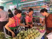 Nông sản Sơn La thu hút người tiêu dùng Thủ đô