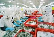 Nhập khẩu tôm chưa nấu chín vào Australia vẫn khiêm tốn
