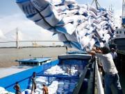 Thêm cơ hội cho xuất khẩu gạo