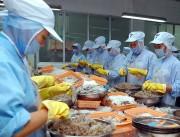 Xuất khẩu tôm sang Hàn Quốc tiếp tục tăng