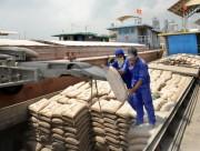 Ngành xi măng: Giải pháp linh hoạt đẩy mạnh xuất khẩu