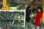 VAFOST: Hỗ trợ doanh nghiệp đẩy mạnh công tác an toàn thực phẩm
