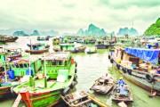 Cảng vụ đường thủy nội địa Quảng Ninh: Nhiều biện pháp quản lý hiệu quả