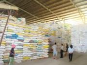 Hỗ trợ hơn 10 nghìn tấn gạo cho 12 địa phương