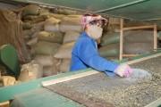 Phú Thọ: Đầu tư lớn cho phát triển làng nghề