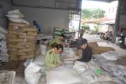 TP. Hồ Chí Minh: Sẽ truy xuất nguồn gốc phân bón