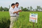 Thái Bình: Doanh nghiệp đồng hành cùng Cuộc vận động
