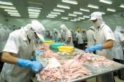 Việt Nam đứng thứ 4 xuất khẩu mực chế biến vào EU