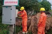 Nhiều giải pháp nâng cao độ tin cậy cung cấp điện