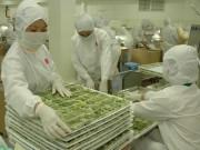 Xuất khẩu rau quả tháng 1/2017 tăng 14,4%