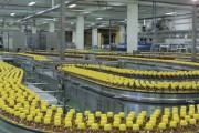URC Việt Nam: Hướng tới người tiêu dùng