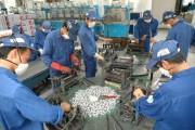 Hải Phòng: Thị trường lao động ổn định