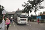 Hoạt động xuất nhập khẩu tại Móng Cái (Quảng Ninh): Khởi sắc từ đầu năm