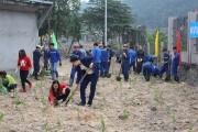 Than Hà Lầm ra quân trồng cây đầu xuân Mậu Tuất 2018