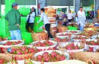 gia thanh long tang vut len 45000 dongkg