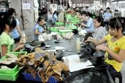 Thúc đẩy hợp tác kinh tế