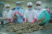 Ngành thủy sản: Giảm sức cạnh tranh vì phí