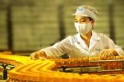 Quảng Ngãi: Tạo ưu thế cho sản phẩm thương hiệu Việt