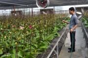Tiếp sức cho nông nghiệp công nghệ cao