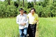 Đạm Cà Mau: Thương hiệu gắn kết cùng nhà nông